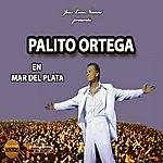 Palito Ortega En Mar Del Plata - Live