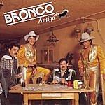 Bronco Bronco Amigo