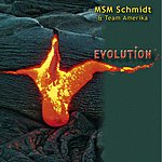 MSM Schmidt Evolution