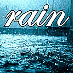Rain Rain - Single