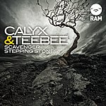 Calyx Scavenger / Stepping Stones