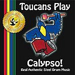 Toucans Steel Drum Band Toucans Play Calypso!