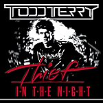 Todd Terry Thief In The Night