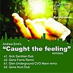 Andrew Emil Caught The Feeling (Remixes)