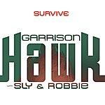 Robbie Survive