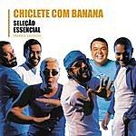 Chiclete Com Banana Seleção Essencial - Grandes Sucessos - Chiclete Com Banana