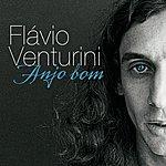 Flavio Venturini Anjo Bom