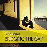 Todd Herzog Bridging The Gap