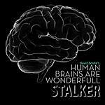 Stalker Human Brains Are Wonderfull (Stalker Remix)