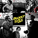 Pocket Size The Dustman Sessions