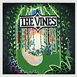 The Vines Highly Evolved