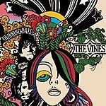 The Vines Winning Days