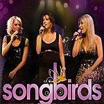 The Songbirds You've Got A Friend