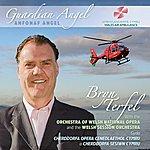 Bryn Terfel Guardian Angel