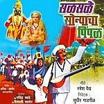 Ravindra Sathe Saalsaalae Sonyacha Peimpal