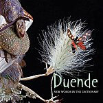 Duende New Words In The Dictionary