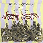 The Princes Of Serendip Serendip Orchestra