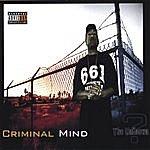 Unknown Criminal Mind