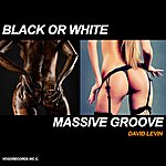 David Levin Black Or White Massive Groove