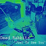 Dead Rabbits Just To See You