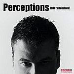 Kiko Navarro Perceptions (DJ Fly Remixes)
