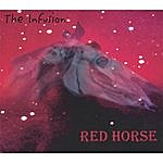 Infusion Red Horse