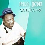 Big Joe Williams Big Joe Williams' Greatest Hits