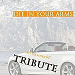 The Dream Team Die In Your Arms (Justin Bieber Instrumental Tribute)
