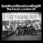 Bob Mould Livedog98