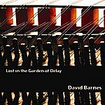 David Barnes Lost In The Garden Of Delay