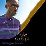 Ninjaman A Ninja - Single