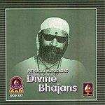 Pithukuli Murugadas Divine Bhajans(Pithukuli Murugadas)