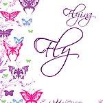 Flying Fly