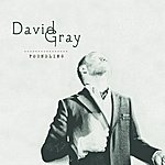 David Gray Foundling (International Version)