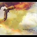 The Mocking Birds Lacuna
