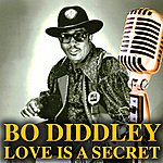 Bo Diddley Love Is A Secret