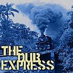 Ronnie Davis The Dub Express Vol 15 Platinum Edition