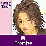 Shin Promise