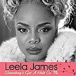 Leela James Something's Got A Hold On Me