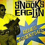 Blind Snooks Eaglin Blues Essentials
