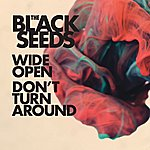 The Black Seeds Dust And Dirt