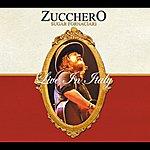 Zucchero Live In Italy (International Version)