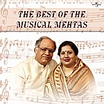Nina Mehta The Best Of The Musical Mehtas