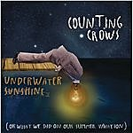 Counting Crows Underwater Sunshine (Or What We Did On Our Summer Vacation)