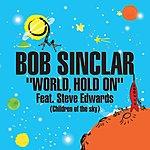 Bob Sinclar World, Hold On