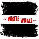 White Whale No Solace