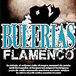 Varios Flamenco Por Bulerias