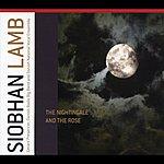 Gerard Presencer Lamb, Siobhan: The Nightingale & The Rose