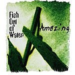 Fish Out Of Water Amazing