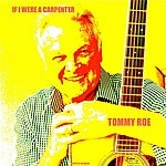 Tommy Roe If I Were A Carpenter